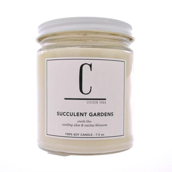 succulent-gardens